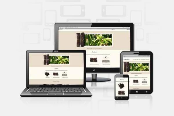 Votre site est-il désuet ou adaptatif ?